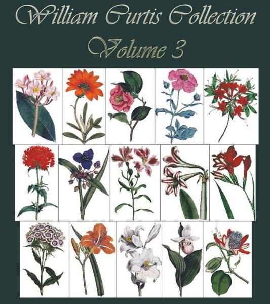 William Curtis Botanical Print Collection Volume 3