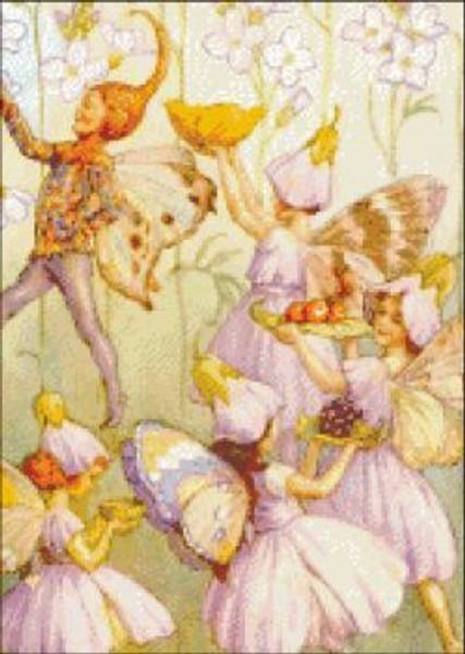 Lady's Smock Fairies