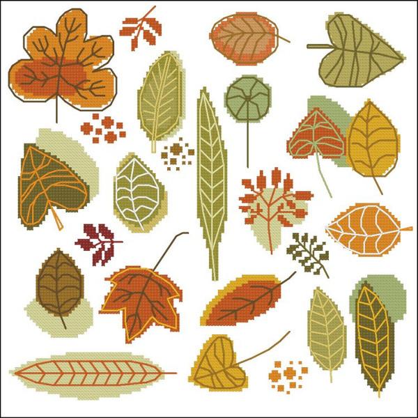 Serene Autumn Leaves