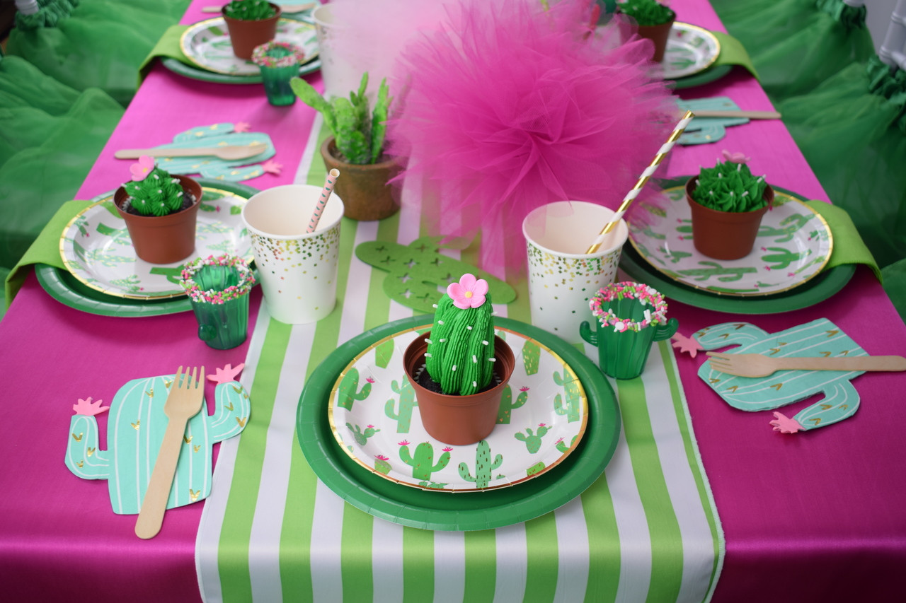 98153f6ca99a Cactus Fiesta Party Package - A Party Made Perfect