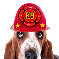 Molly and Bandit™ Pet Party - Birthday Dog Party Hat - Fireman Collection