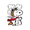 Peanuts® Year Round Snoopy® Poses Bulletin Board Set