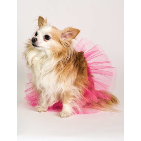 Molly and Bandit™ Pet Party - Pink Tulle Tutu for Dogs - Tropical Collection