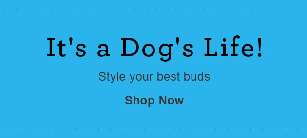 It's a Dog's Life! Style your best buds