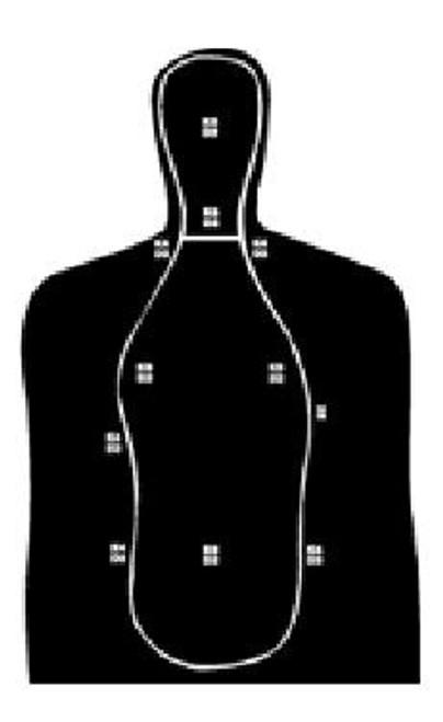National Target B21M - 250 Targets