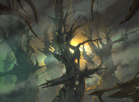 Scars Forest