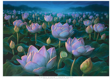 Lotus Field Limited Edition A2 Giclée