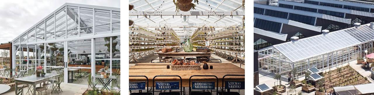 burwood-brickworks-melbourne-architectural-greenhouse-hospitality-glasshouse-rooftop-garden-restaurant-greenhouse-quarantine-greenhouse.jpg