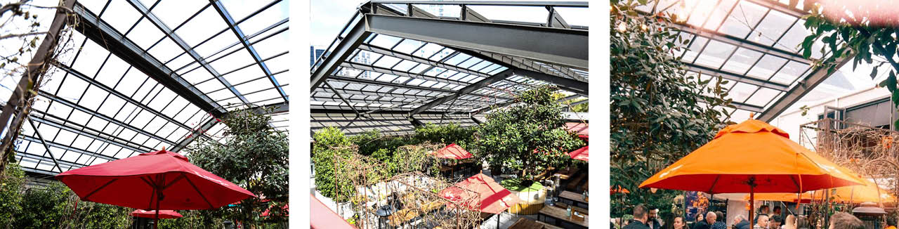 the-gardens-at-takapuna-glass-roof-architectural-greenhouse-hospitality-glasshouse-wide-space.jpg