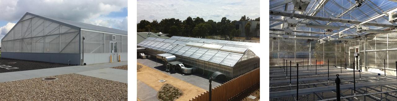 winter-gardenz-quarantine-greenhouses-5.jpg