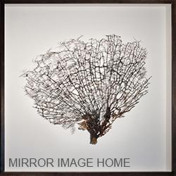 Mirror Image Artwork