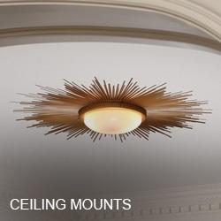 Ceiling Mounts