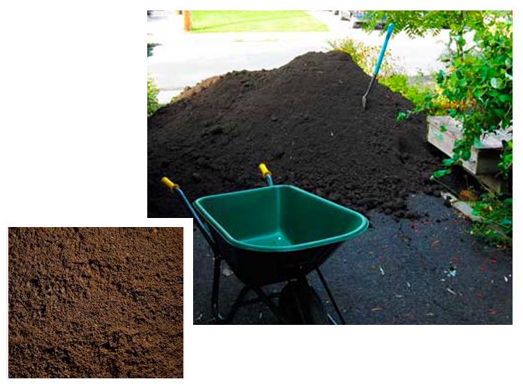 top-soil.png