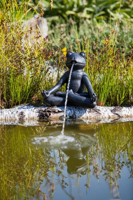 Yoga Frog Statute