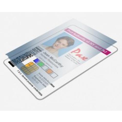 Zebra Lam 1 MIL ZXP7 BOT/HOLO/Safe2 750 Images (800086-002)