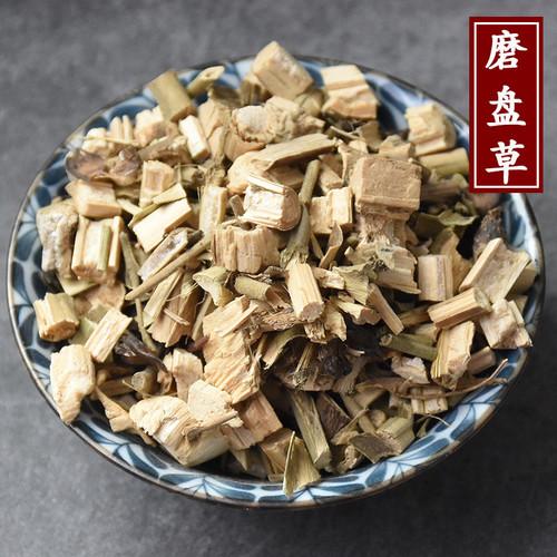 Mo Pan Cao Abutilon Indicum