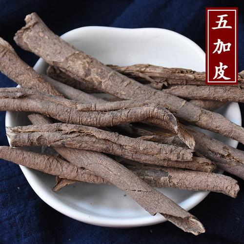 Wu Jia Pi Cortex Acanthopanacis