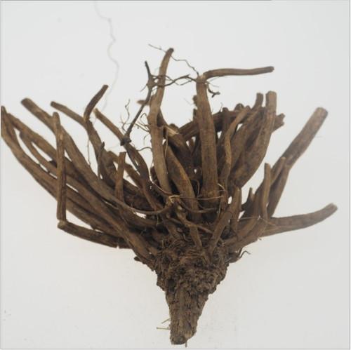 Da Ji Gen Japanese Thistle Roots
