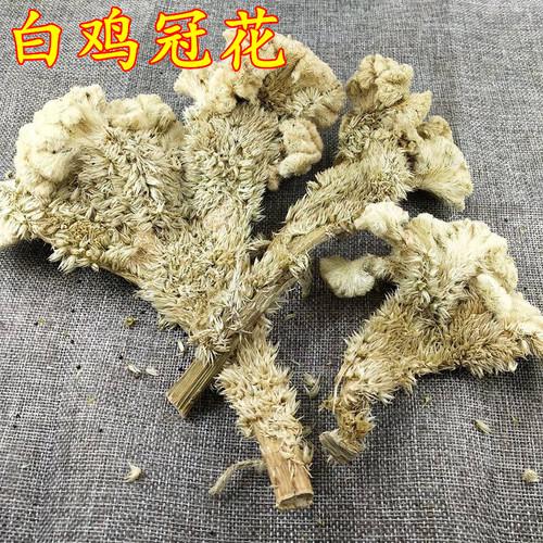 Bai Ji Guan Hua Cockscomb White Flower