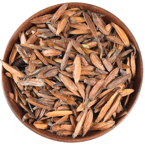 Camptotheca Acuminata Happy Tree Cancer Tree Seeds