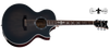 Schecter SYNYSTER GATES-GA SC-ACOUSTIC