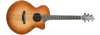 Breedlove Premier Auditorium Copper CE Sitka-EI Rosewood- Updated for 2017