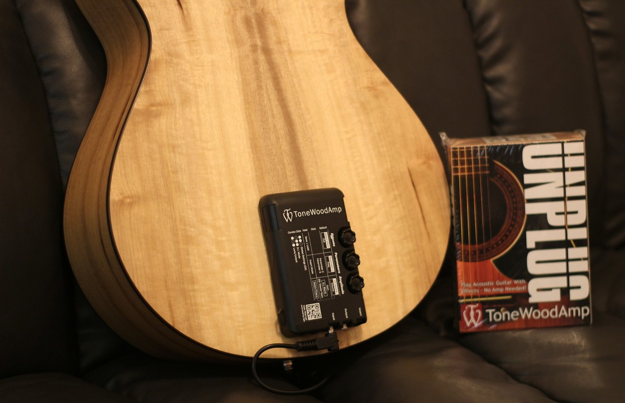 Tone Wood Amp for Acoustic Guitar (Free 2-Day Shipping)