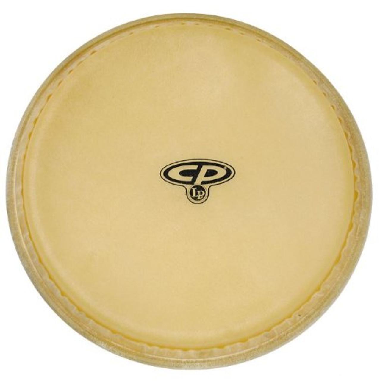 Drum Workshop 10 Inreplcmnt Head for Cp636-Wrb