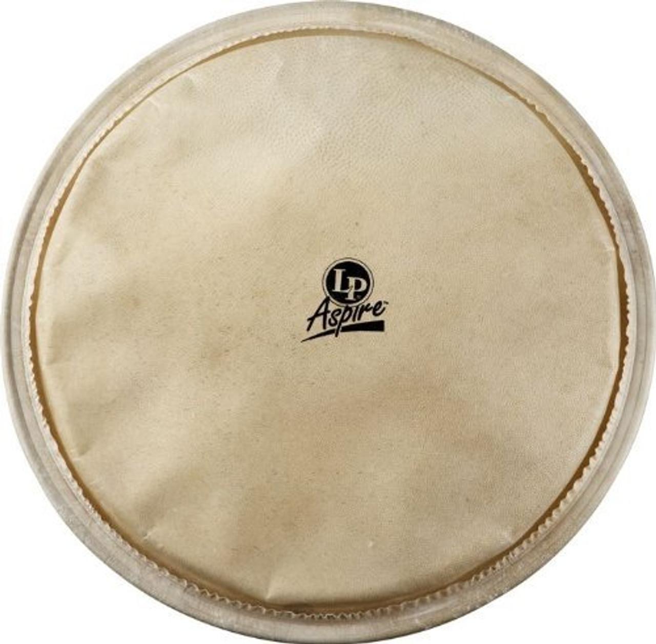 Drum Workshop Djembe Head 12 1/2 for Lpa630 & Caliente