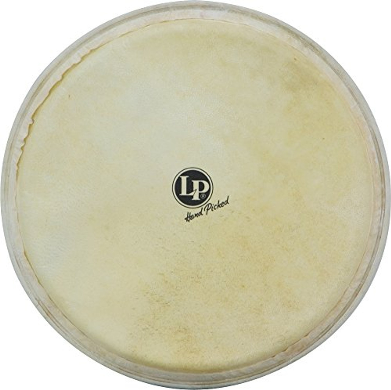 Drum Workshop 12 1/2 Djembe Repl Hd F/lp720