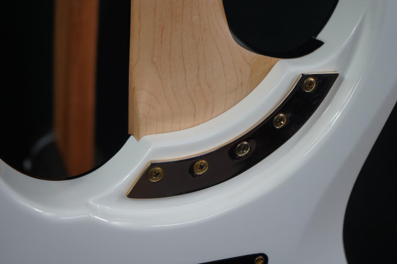 Washburn PXM-DP10WH PXM Series David Palau Signature. Gloss White