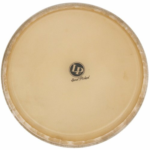 Drum Workshop Evans Synth. Hd Tumba X Series