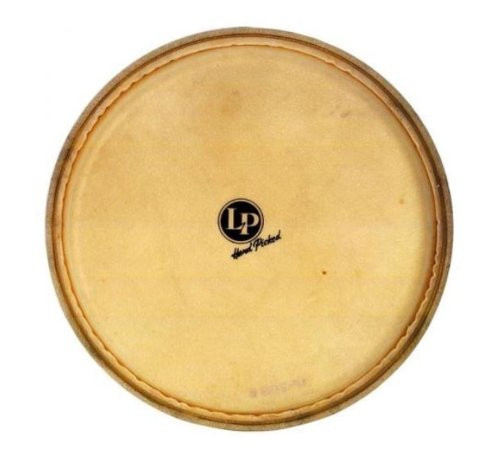 Drum Workshop Evans Synth.hd. Quinto Z-Serie