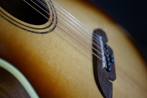 Alvarez Artist Grand Auditorium Acoustic-Electric Guitar, 8-String