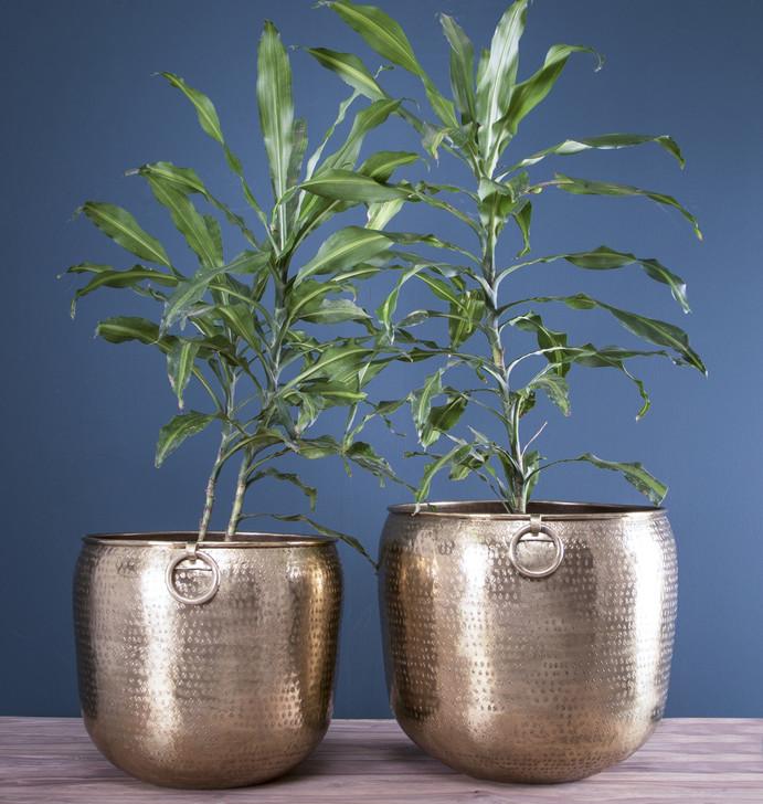 Set Of 2pcs Pot Planters In Brass (PL1493)