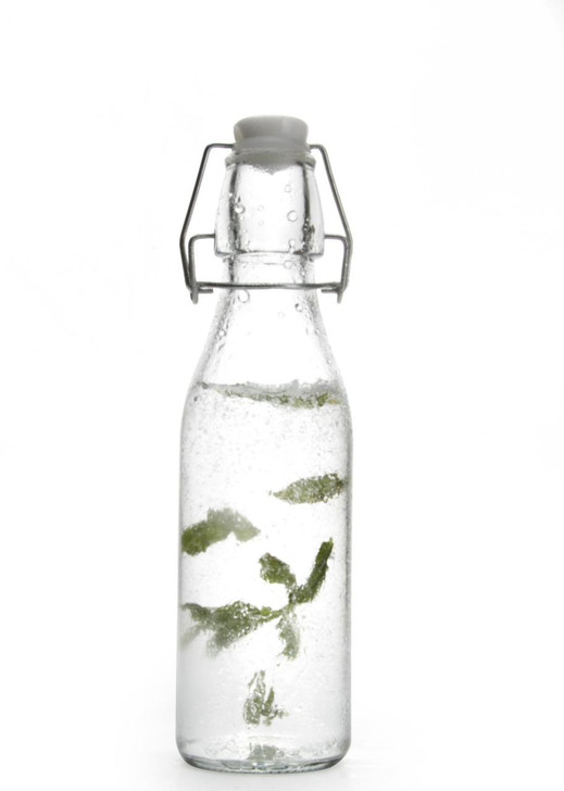 Retro Clear Glass Water Bottle With Clip Lid 250ml - OUT OF STOCK