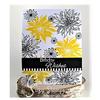 Chrysanthemum Solid Wispy