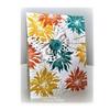 Chrysanthemum Wispy Outline