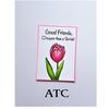 Friendship Tulip