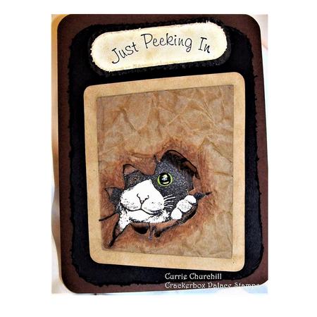 Cat Peeking In bag