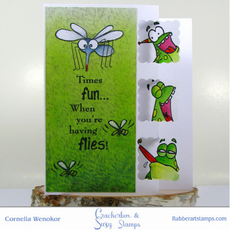 Flies and Frogs