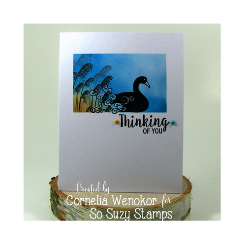 Thinking of You with Swan