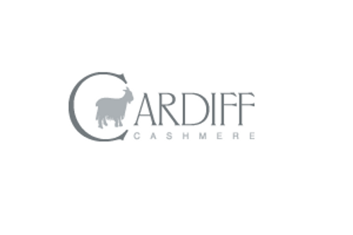 ALL CARDIFF CASHMERE YARN