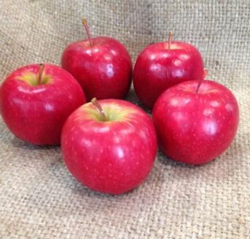 Apples Pink Lady Organic - each (approx.)