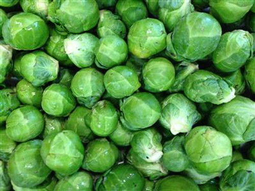 Brussels Sprouts Organic - 100g (approx. 5)