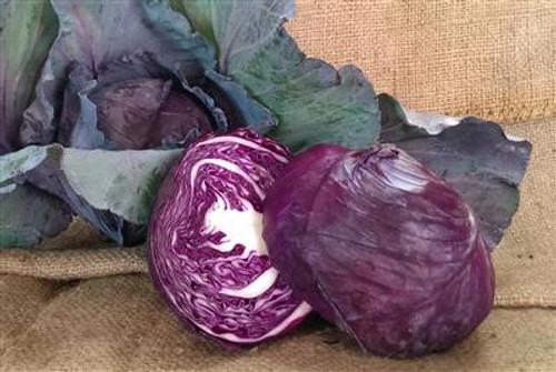 Cabbage Red Organic - Half