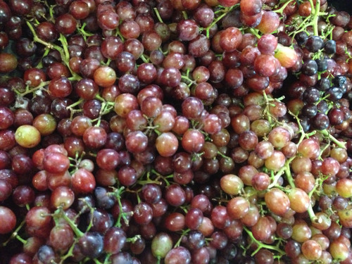 Grapes Crimson Seedless Organic - per kg
