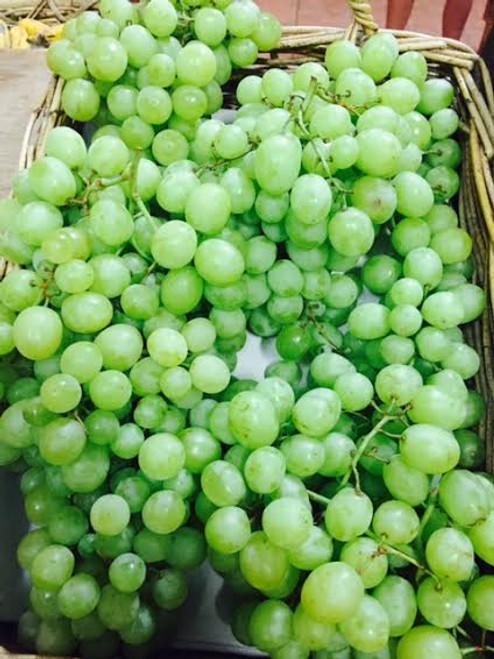 Grapes Green Minindee Seedless Organic - per 100g