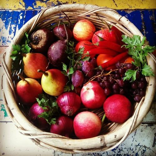 Juicing Box Organic $35