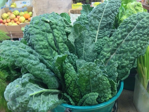Kale Cavelo Nero Organic - Bunch